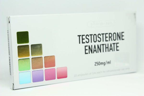 Testosterone Enanthate Pharm Tec scaled 1