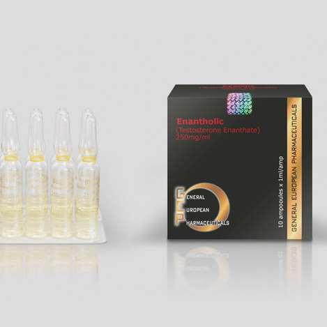 gep enantholic testosterone enanthate